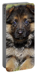 Portable Battery Charger featuring the photograph Puppy In Heart by Sandy Keeton