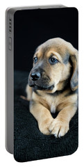 Puppy Portrait Portable Battery Charger