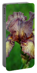 Portable Battery Charger featuring the photograph Purple And Yellow Iris In Spring by Sheila Brown