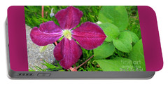 Purple Clematis In Bloom Portable Battery Charger