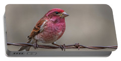 Portable Battery Charger featuring the photograph Purple Finch On Barbwire by Paul Freidlund