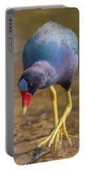 Purple Gallinule Bigfoot Portable Battery Charger