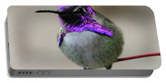 Purple Headed Hummer Portable Battery Charger