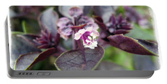 Portable Battery Charger featuring the photograph Purple In Autumn by Joan  Minchak