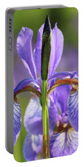 Portable Battery Charger featuring the photograph Purple Iris Sunlight by Rachel Cohen
