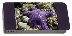 Purple Star Fish Portable Battery Charger