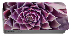 Purple Succulent Plant Blossom In Summer Portable Battery Charger