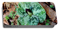 Purple Toadshade Trillium Portable Battery Charger
