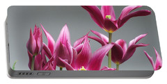 Purple Tulips Portable Battery Charger by Helen Northcott