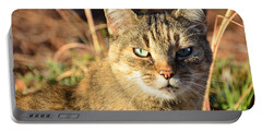 Purr-fect Kitty Cat Friend Portable Battery Charger