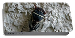 Putnam's Cicada Portable Battery Charger by Anne Rodkin