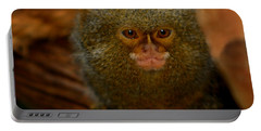 Pygmy Marmoset Portable Battery Charger