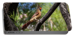 Pyrrhuloxia At Work Portable Battery Charger