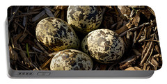 Quartet Of Killdeer Eggs By Jean Noren Portable Battery Charger by Jean Noren