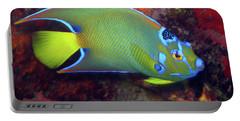 Queen Angelfish, U. S. Virgin Islands 2 Portable Battery Charger