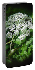 Queen Ann Lace Portable Battery Charger