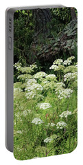 Queen Annes Lace Daucus Carota Portable Battery Charger