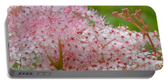 Queen Of The Prairie Nature Art Portable Battery Charger