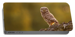 Qui, Moi? Little Owlet In Warm Light Portable Battery Charger