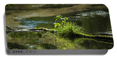 Quiet Trout Stream Portable Battery Charger