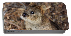 Quokka Portable Battery Charger