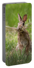 Rabbit Collector  Portable Battery Charger by Terry DeLuco