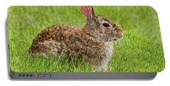 Rabbit In A Grassy Meadow Portable Battery Charger