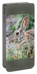 Rabbit Munching Lunch Portable Battery Charger
