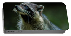 Raccoon 1 Portable Battery Charger