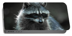 Raccoon 2 Portable Battery Charger