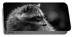 Raccoon 3 Portable Battery Charger