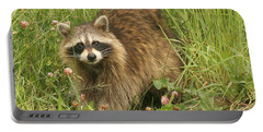 Portable Battery Charger featuring the photograph Raccoon  by Doris Potter