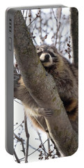 Afternoon Nap-raccoon Up A Tree  Portable Battery Charger