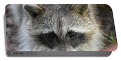Raccoon's Gorgeous Face Portable Battery Charger