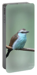 Racket-tailed Roller V2 Portable Battery Charger