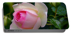 Portable Battery Charger featuring the photograph Rain-kissed Rose by Byron Varvarigos