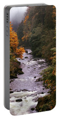 Portable Battery Charger featuring the photograph Rain, Mist And Color by Hans Franchesco