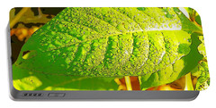 Rain On Leaf Portable Battery Charger