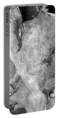 Rainbow Driftwood Black And White Portable Battery Charger