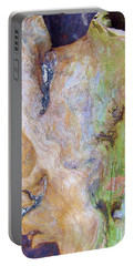 Rainbow Driftwood Portable Battery Charger