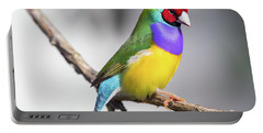 Rainbow Finch Portable Battery Charger