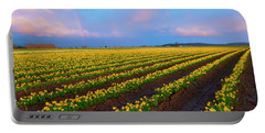 Portable Battery Charger featuring the photograph Rainbows, Daffodils And Sunset by Mike Dawson