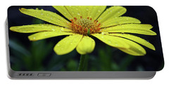 Portable Battery Charger featuring the photograph Raindrops On Daisy by Judy Vincent