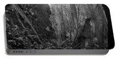 Portable Battery Charger featuring the photograph Rainforest Black And White by Sharon Talson