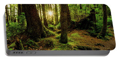 Olympic National Park Portable Battery Chargers