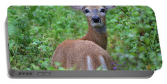 Rainy Day Doe Portable Battery Charger