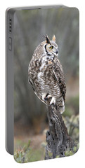 Rainy Day Owl Portable Battery Charger