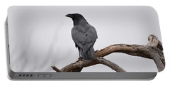 Rainy Day Raven Portable Battery Charger