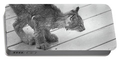 Crouching Kitty Portable Battery Charger