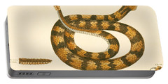 Rattlesnake Portable Battery Charger by Mark Catesby